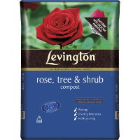 Levington Rose Tree Shrub 50L