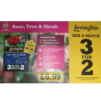 Levington rose tree and shrub 200