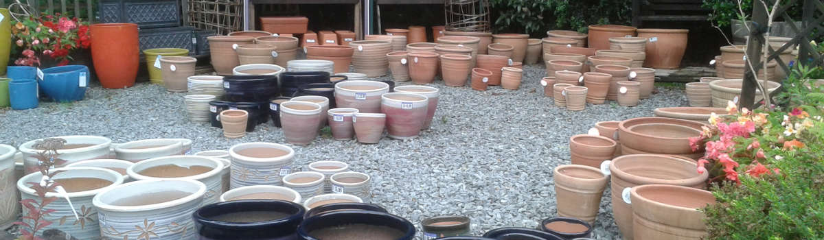 Pots for bulbs and bedding!